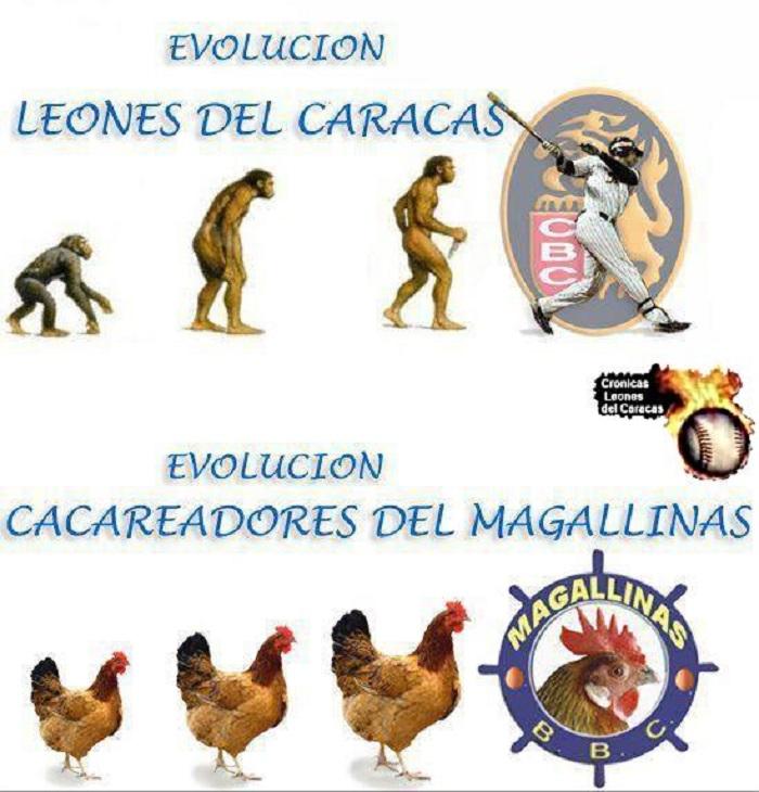 chalequeo-caracas-magallanes-3-cronicas-leones-cl